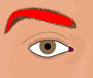 "Illustration from ""Create Perfect Eyebrows"""